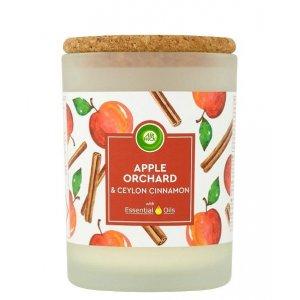 Air Wick Life Scents Apple Orchard&Ceylon cinnamon 185g