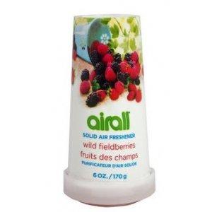 Airall Berries gélový osviežovač vzduchu 170g
