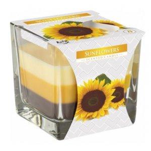 Bispol Tricolor Sunflowers vonná sviečka snk80-330