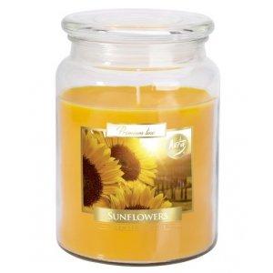 Bispol Sunflowers sviečka v skle s viečkom SND99-329  Doba horenia: cca 100 hodín Výška: 14cm Priemer: 9,9cm